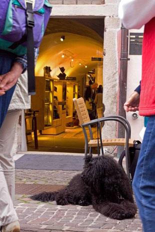 In der Altstadt von Bozen war was los, da gab es eine Menge zu gucken. Erst hieß es, im Schuhgeschäft artig sein ...