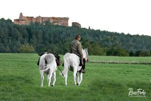 RossFoto Dana Krimmling, Pferdefotografie, Fotografien vom Wanderreiten Westernreiten, Jagdreiten, Kavallerie, Ausreiten, Freiberger Pferde, Western horse
