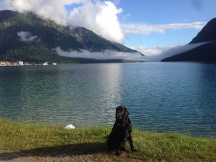 Fitch am Achensee :-)
