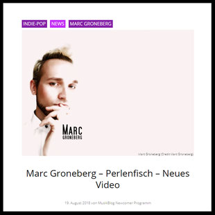 Screenshot - Marc Groneberg - Artikel - News auf musikblog.de