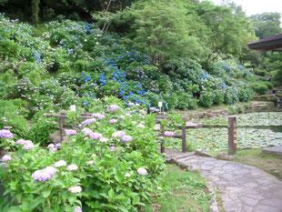 みのかも健康の森 家族友人 楽しむ 自然公園 休日 美濃加茂 可茂 中濃 岐阜