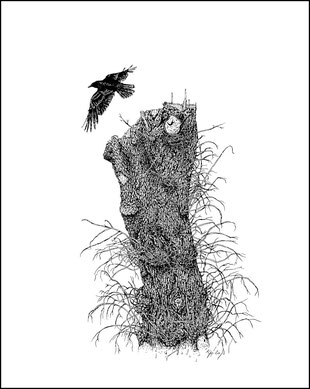 kitsch, paradise, artisan, créateur, artisanat, dessin, encre de chine, corbeau, trogne, chêne