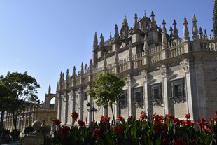 Seville's tours