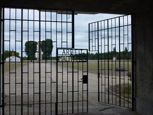 (D) Sachsenhausen 04.08.2013