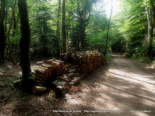 La Forest Landerneau (29) RLM 2013