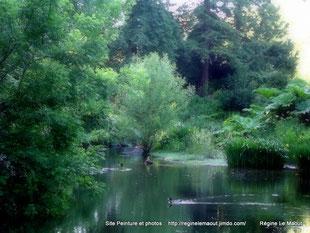 Jardin botanique, Brest. RLM 2013