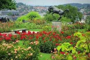 Rosengarten Winterthur