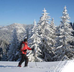 Pistengehen und leichte Skitouren in Oberbayern und Tirol