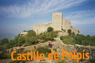 castillo-de-polpis.jpg