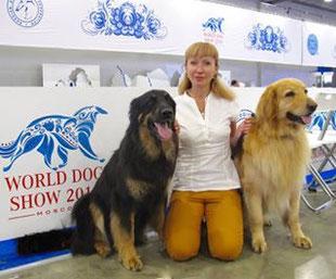 Birdy BENJAMIN erreichte auf der Welthundeausstellung einen exzellenten dritten Platz in der Offenen Klasse Rüden. Herzlichen Glückwunsch!