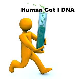 Humane COT I DNA, Cot-1 DNA, Cot i Human DNA