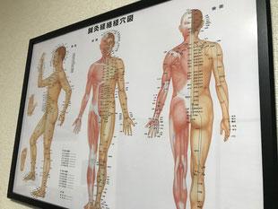 小牧 はりきゅう 鍼治療 針治療 鍼灸 腰痛 ギックリ腰 坐骨神経痛 頭痛 肩こり 自律神経 美容鍼