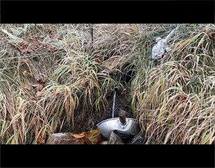 奈良県吉野郡下北山村前鬼にある釈迦ヶ岳のかくし水