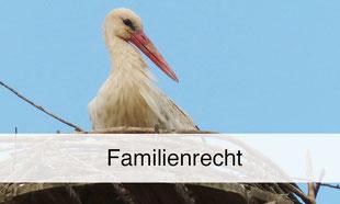 Axel Petereit, Notar und Rechtsanwalt für Familienrecht