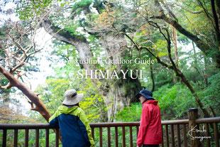 屋久島・縄文杉トレッキングツアーは、屋久島ガイドとともに。島結では、ガイドなしでは味わえない楽しさをお届けします。