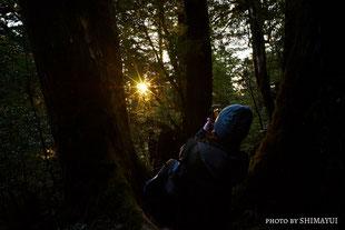 季節によっては朝日が,太忠岳,冬,屋久島,ガイドツアー