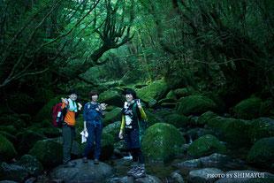 苔の沢,白谷雲水峡,リバーカヤック,屋久島,半日,ガイドツアー