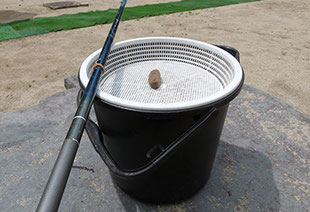 白根魚苑ニジマスの釣り体験