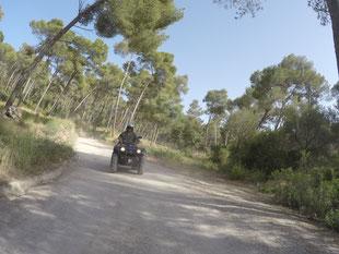 Ferienwohnung mieten auf Mallorca, in Alcudia