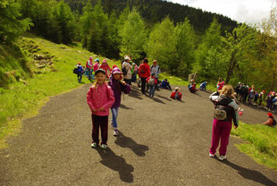 Zielona Szkoła dzień 2