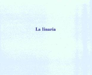 copertina in cartoncino grigio stampata con inchiostro violetto