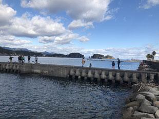 Whale beach park