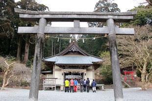 特殊伐採事例(村山浅間神社|静岡県富士宮市)ウッドタワー工法にて施工