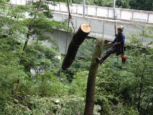 ウッドタワー工法は集材が安全に行えます。