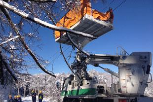 特殊伐採・緊急出動事例(JR篠ノ井線|長野県)高所作業車にて施工