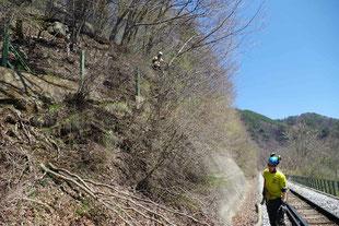 特殊伐採事例(JR小梅線|長野県佐久穂町)ウッドタワー工法にて施工