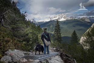 Mit Hund in den Dolomiten: WanderunMit Hund in den Dolomiten: Wanderung zum Lago di Sorapissg zum Lago di Sorapiss