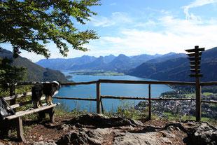 Wandern mit Hund Frühjahr Salzburg Plombergstein