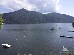wandern mit hund; Lago Maggiore; mein-wanderhund; Andrea Obele;