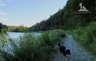 Wandern mit Hund Burg Burghausen
