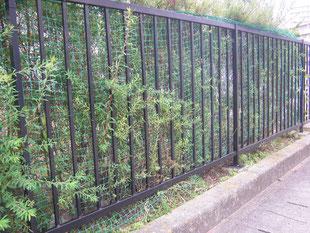 フェンス改修工事:工事後