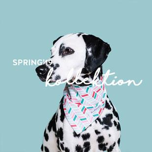 hundsoadli Frühlingskollektion Mode für Hunde