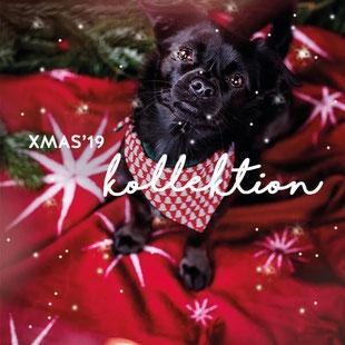 Weihnachten Hundehalsband und co