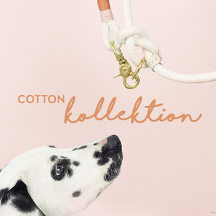 Cotton kollektion