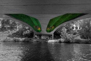 Brückenauge