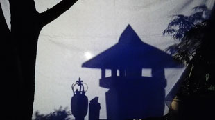 """Schattentheater - """"Der Froschkönig"""" - eine stilvolle Aufführung für Kinder."""