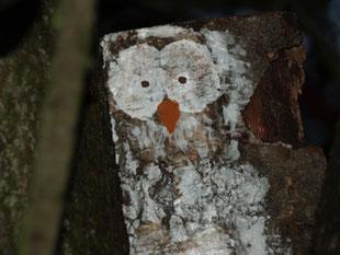 Ein Stück Holz zeigt ein aufgemaltes Eulengesicht.