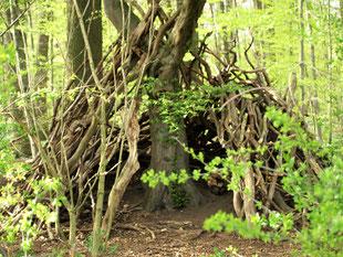 Um einem Baum herum wurde aus Ästen ein Tipi gebaut.