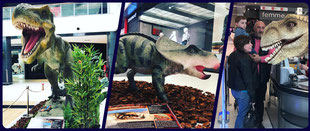 exposition dinosaures magasins centres commerciaux pau tarbes dax toulouse auch bayonne aquitaine Pyrenees occitanie