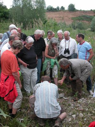 Gemeinsam für mehr Artenschutz: Unsere NABU-Gruppe unterwegs.
