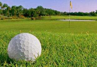 campi da golf senza fastidio delgli insetti fastidiosi