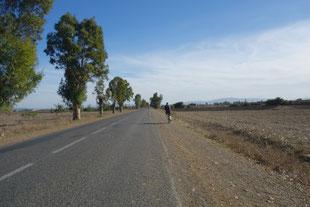 Longue route monotone