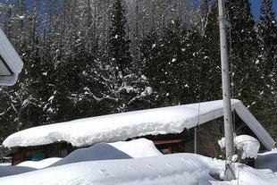 真冬は雪かきをしないと雪で家が埋まります