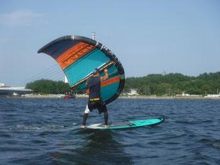 ウインドサーフィン WING FOIL 海の公園 スピードウォール 神奈川 横浜 初心者 体験