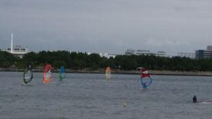ウインドサーフィン 海の公園 横浜 金沢 スピードウォール