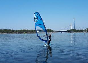 ウインドサーフィン 海の公園 スピードウォール スクール 初心者 神奈川 横浜